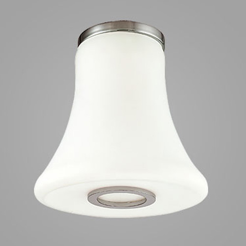 CSL Lighting Curve Wall or Ceiling Light